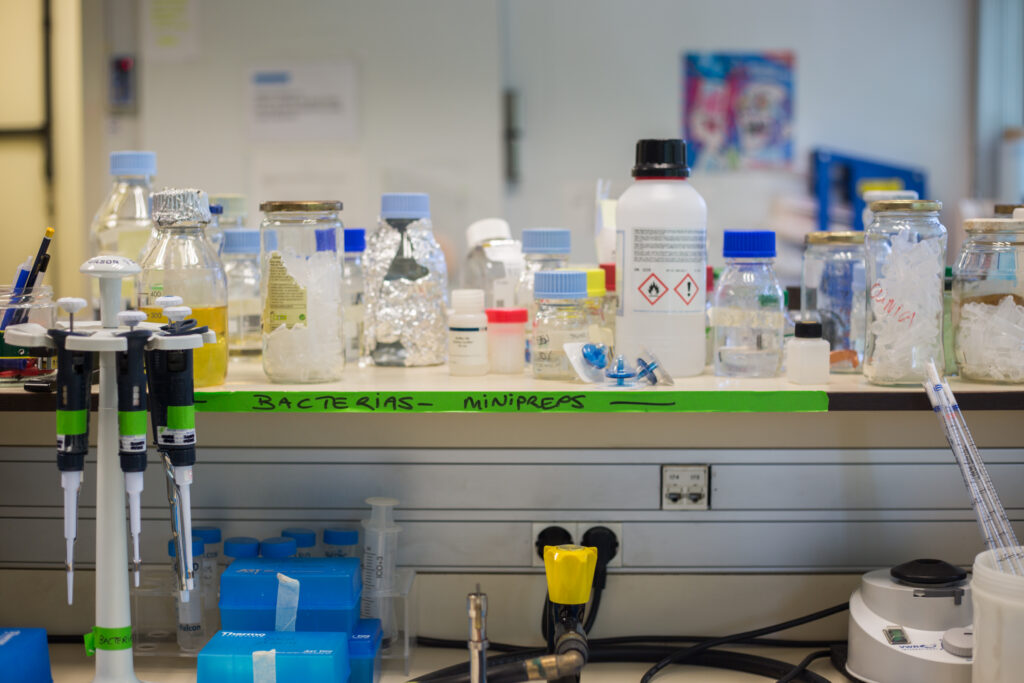 Noviembre: trabajamos con virus de pacientes en el laboratorio