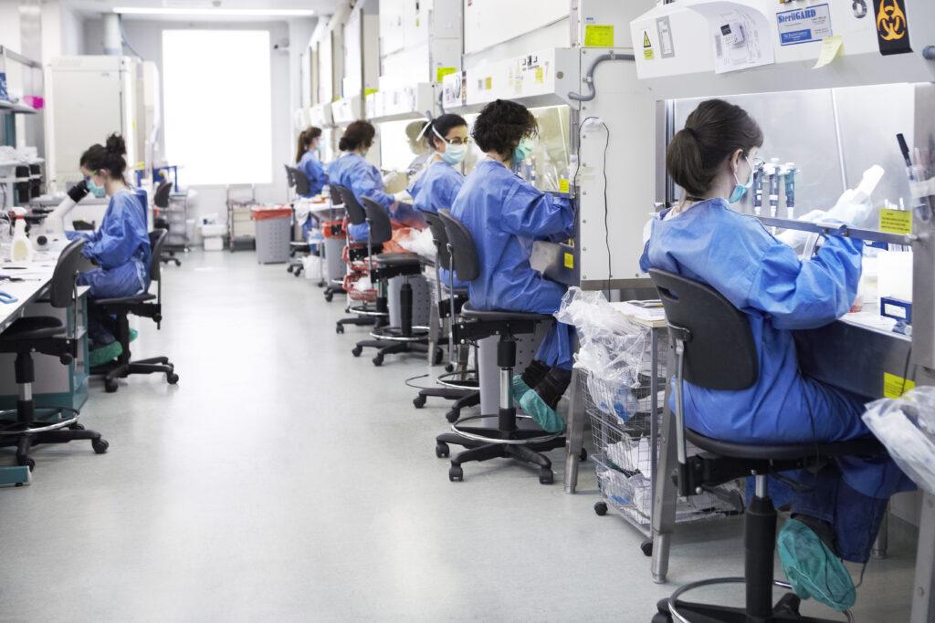 Agosto: nuevo laboratorio y nuevas líneas de investigación